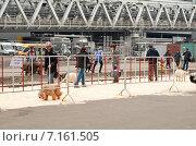 """Купить «Выставка """"Евразия-2015"""": оборудованная площадка для выгула собак», эксклюзивное фото № 7161505, снято 21 марта 2015 г. (c) Константин Косов / Фотобанк Лори"""