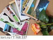 Посткроссинг. Почтовые открытки и роза (2015 год). Редакционное фото, фотограф Илюхина Наталья / Фотобанк Лори