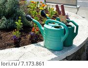 Купить «Две лейки для воды около цветочной клумбы», фото № 7173861, снято 6 июня 2013 г. (c) Татьяна Кахилл / Фотобанк Лори