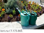 Купить «Две лейки для воды около цветочной клумбы», фото № 7173865, снято 6 июня 2013 г. (c) Татьяна Кахилл / Фотобанк Лори