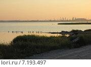 Утро за городом. Стоковое фото, фотограф Svet / Фотобанк Лори