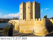 Calahorra Tower and Roman bridge in Cordoba (2014 год). Стоковое фото, фотограф Яков Филимонов / Фотобанк Лори