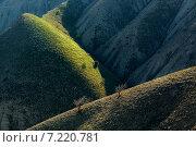 Линии жизни. Стоковое фото, фотограф Фёдор Ветров / Фотобанк Лори