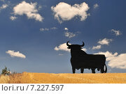 Купить «Osborne bull billboard, Toro de Osborne, Andalucia, Spain.», фото № 7227597, снято 19 октября 2018 г. (c) BE&W Photo / Фотобанк Лори