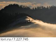 Купить «Nepal, Ghorepani, Poon Hill, Dhaulagiri massif, Himalaya, Sunrise view from Poon Hill, Dhaulagiri massif, Himalaya», фото № 7227745, снято 20 июля 2019 г. (c) BE&W Photo / Фотобанк Лори
