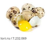 Купить «Разбитое перепелиное яйцо среди целых», фото № 7232069, снято 5 апреля 2015 г. (c) Наталия Пыжова / Фотобанк Лори