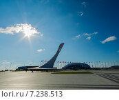 Олимпийский факел в Сочи (2014 год). Редакционное фото, фотограф Руслан Нунаев / Фотобанк Лори