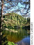Купить «Река Бия, летний пейзаж», фото № 7249681, снято 3 августа 2014 г. (c) Александр Карпенко / Фотобанк Лори