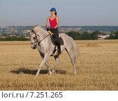 Молодая красивая девушка летним днем тренирует серую лошадь по программе выездки на скошенном пшеничном поле на размытом фоне поселения. Стоковое фото, фотограф Елена Зенкович / Фотобанк Лори