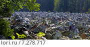Тыгынский курум (2014 год). Редакционное фото, фотограф Рамиль Юсупов / Фотобанк Лори