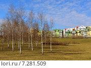 Купить «Весна в Митинском ландшафтном парке, Москва», фото № 7281509, снято 18 апреля 2015 г. (c) Валерия Попова / Фотобанк Лори