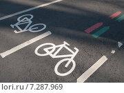 Купить «Велосипедная дорожка», фото № 7287969, снято 12 апреля 2015 г. (c) Александр Курлович / Фотобанк Лори