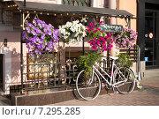 Городской пейзаж с велосипедом и яркими цветами (2014 год). Редакционное фото, фотограф Светлана Пальцева / Фотобанк Лори