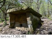 Купить «Дольмен в весеннем лесу», фото № 7305481, снято 24 апреля 2015 г. (c) Игорь Архипов / Фотобанк Лори