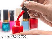 Купить «Красный лак для ногтей и женская рука», фото № 7310705, снято 25 апреля 2015 г. (c) Леонид Штандель / Фотобанк Лори