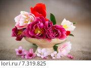 Купить «Букет весенних тюльпанов в вазе», фото № 7319825, снято 27 апреля 2015 г. (c) Peredniankina / Фотобанк Лори