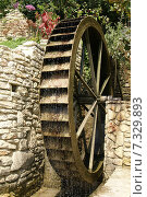 Купить «Водяная мельница», фото № 7329893, снято 30 июля 2010 г. (c) Дмитрий Чулков / Фотобанк Лори