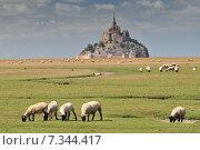 Mont St Michel Normandy France. Стоковое фото, агентство BE&W Photo / Фотобанк Лори