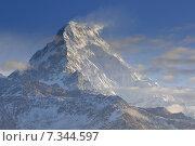 Купить «Nepal, Ghorepani, Poon Hill, Dhaulagiri massif, Himalaya, Annapurna South view from Poon Hill, Himalaya», фото № 7344597, снято 20 июля 2019 г. (c) BE&W Photo / Фотобанк Лори