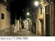 Купить «Albaicin by night, Granada, Andalusia, Spain», фото № 7344785, снято 16 июля 2020 г. (c) BE&W Photo / Фотобанк Лори