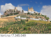 Купить «Olvera is a white village (pueblo blanco) in Cadiz province, Andalucia, Spain. It features a moorish fortress and a neoclassic cathedral overlooking the whitewashed village.», фото № 7345049, снято 23 июля 2019 г. (c) BE&W Photo / Фотобанк Лори