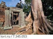 Cambodia, Siem Reap, Angkor, Preah Khan, temple. Стоковое фото, агентство BE&W Photo / Фотобанк Лори