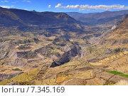 Peru, Colca Valley, Terrace Cultivation. Стоковое фото, агентство BE&W Photo / Фотобанк Лори