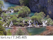 Купить «Croatia, Plitvicka Jezera, Plitvice Lakes National Park, Plitvice Lakes National Park», фото № 7345405, снято 18 декабря 2018 г. (c) BE&W Photo / Фотобанк Лори