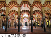 Купить «Interior of the Mezquita (Cathedral-Mosque), Cordoba, Andalucia, Spain», фото № 7345465, снято 20 августа 2019 г. (c) BE&W Photo / Фотобанк Лори
