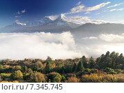 Купить «Nepal, Ghorepani, Poon Hill, Dhaulagiri massif, Himalaya, Annapurna South and Annapurna I, view from Poon Hill, Himalaya», фото № 7345745, снято 20 июля 2019 г. (c) BE&W Photo / Фотобанк Лори