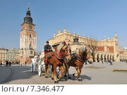 Купить «Horse carriage and Cloth Hall (Sukiennice) on Main Market Square Cracow, PolandPoland, Cracow, Main Market Square, Sukiennice (Cloth Hall), Horse Carriage», фото № 7346477, снято 26 марта 2019 г. (c) BE&W Photo / Фотобанк Лори