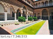 Купить «The Alcazar. Patio de las Doncellas (patio of the maidens) in the Palace of Pedro 1st», фото № 7346513, снято 23 мая 2019 г. (c) BE&W Photo / Фотобанк Лори