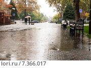 Купить «Большая лужа на аллеи в дождливую погоду. город Краснодар», фото № 7366017, снято 18 октября 2014 г. (c) Сергей Лешков / Фотобанк Лори