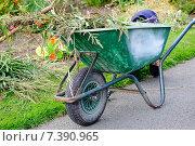 Купить «Садовая тачка», фото № 7390965, снято 19 сентября 2012 г. (c) Татьяна Кахилл / Фотобанк Лори