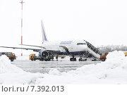 Купить «Спецслужбы аэродромно-технического обеспечения обслуживают самолет Boeing-767. Аэропорт Петропавловск-Камчатский во время снегопада», фото № 7392013, снято 19 марта 2015 г. (c) А. А. Пирагис / Фотобанк Лори
