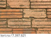 Купить «brick wall texture», фото № 7397921, снято 12 февраля 2015 г. (c) Syda Productions / Фотобанк Лори