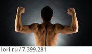 Купить «young male bodybuilder from back», фото № 7399281, снято 22 сентября 2014 г. (c) Syda Productions / Фотобанк Лори