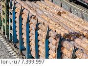 Купить «Вагоны с лесом», фото № 7399997, снято 18 ноября 2018 г. (c) Сергей Куров / Фотобанк Лори