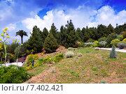 View of Botanical garden of Barcelona. Стоковое фото, фотограф Яков Филимонов / Фотобанк Лори