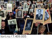 Купить «Бессмертный полк, Санкт-Петербург», фото № 7409005, снято 9 мая 2015 г. (c) Дмитрий Николаев / Фотобанк Лори