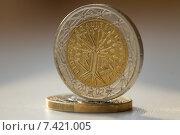 Купить «Евро в монетах», фото № 7421005, снято 11 мая 2015 г. (c) Момотюк Сергей / Фотобанк Лори