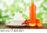 Купить «Посуда и чистящее средство», фото № 7423821, снято 6 августа 2014 г. (c) Сергей Молодиков / Фотобанк Лори