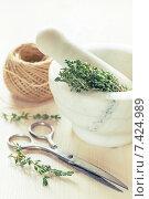 Сушеный тимьян в ступке, ножницы и бечевка. Стоковое фото, фотограф Ирина Буракова / Фотобанк Лори