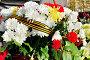 Цветы у мемориальной стелы «Город воинской славы» в Великом Новгороде, Россия, фото № 7443797, снято 10 мая 2015 г. (c) Зезелина Марина / Фотобанк Лори