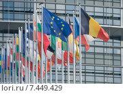 Купить «Strasbourg, France, flags of the EU Member States before the European Parliament», фото № 7449429, снято 3 сентября 2010 г. (c) Caro Photoagency / Фотобанк Лори