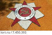 Купить «Орден Отечественная Война - газон стилизованный под орден», фото № 7450393, снято 12 мая 2015 г. (c) Олег Пчелов / Фотобанк Лори