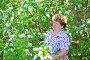 Пожилая женщина в природе рядом с цветущей черемухой, фото № 7451181, снято 8 мая 2015 г. (c) Володина Ольга / Фотобанк Лори