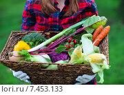 Купить «Девушка в перчатках держит корзину со свежими овощами», фото № 7453133, снято 24 августа 2019 г. (c) Дарья Петренко / Фотобанк Лори