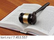 Купить «Судейский молоток лежит на раскрытом уголовном кодексе», фото № 7453557, снято 30 апреля 2015 г. (c) Денис Ларкин / Фотобанк Лори