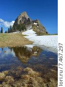 Купить «Солнечный день в горах Кавказа весной», фото № 7467297, снято 20 мая 2015 г. (c) александр жарников / Фотобанк Лори